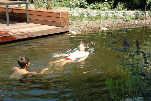 Aanleg zwemvijver met helofytenfilter 1 drupal for Zwemvijver zelf bouwen